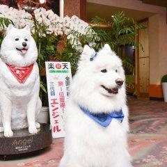 Отель Kokonoe Yuyutei Япония, Минамиогуни - отзывы, цены и фото номеров - забронировать отель Kokonoe Yuyutei онлайн с домашними животными