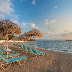 Отель Oasis Beach Hotel Греция, Агистри - отзывы, цены и фото номеров - забронировать отель Oasis Beach Hotel онлайн пляж