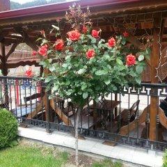 Отель Family Hotel Yola Болгария, Чепеларе - отзывы, цены и фото номеров - забронировать отель Family Hotel Yola онлайн фото 4