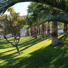 Отель Santorini Kastelli Resort Греция, Остров Санторини - отзывы, цены и фото номеров - забронировать отель Santorini Kastelli Resort онлайн приотельная территория