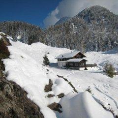 Отель Garni Tenne Австрия, Зёлль - отзывы, цены и фото номеров - забронировать отель Garni Tenne онлайн