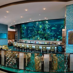 Golden Nugget Las Vegas Hotel & Casino гостиничный бар