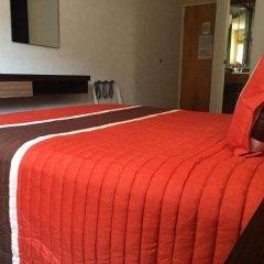 Отель Ibeurohotel Expo Мексика, Гвадалахара - отзывы, цены и фото номеров - забронировать отель Ibeurohotel Expo онлайн комната для гостей фото 3