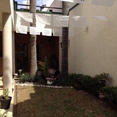 Отель Hostel Hostalife Мексика, Гвадалахара - отзывы, цены и фото номеров - забронировать отель Hostel Hostalife онлайн фото 14