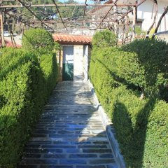 Отель Guest House Emiliano Албания, Берат - отзывы, цены и фото номеров - забронировать отель Guest House Emiliano онлайн приотельная территория