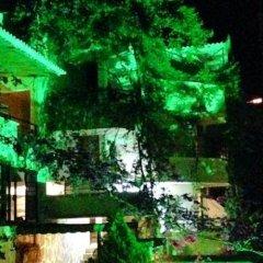 Pataros Hotel Турция, Патара - отзывы, цены и фото номеров - забронировать отель Pataros Hotel онлайн фото 7