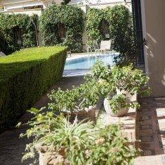 Отель Villa Jerez Испания, Херес-де-ла-Фронтера - отзывы, цены и фото номеров - забронировать отель Villa Jerez онлайн фото 7