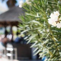 Отель Yellow Alvor Garden - All Inclusive фото 4