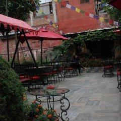 Отель Encounter Nepal Непал, Катманду - отзывы, цены и фото номеров - забронировать отель Encounter Nepal онлайн фото 9