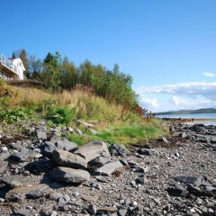 Отель Tromsø Apartments Норвегия, Тромсе - отзывы, цены и фото номеров - забронировать отель Tromsø Apartments онлайн пляж