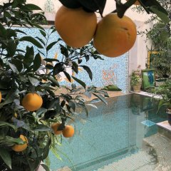 Dar Souad in Tunis, Tunisia from 122$, photos, reviews - zenhotels.com childrens activities photo 2