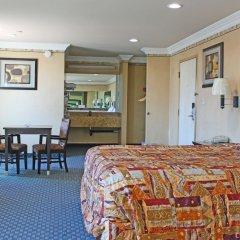 Отель Crystal Inn Suites & Spas комната для гостей фото 3