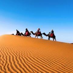 Отель Sahara Royal Camp Марокко, Мерзуга - отзывы, цены и фото номеров - забронировать отель Sahara Royal Camp онлайн спортивное сооружение