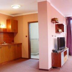 Отель Family Hotel Balkana Болгария, Боженци - отзывы, цены и фото номеров - забронировать отель Family Hotel Balkana онлайн комната для гостей фото 2