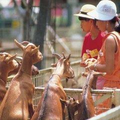 APA Hotel Miyazakieki-Tachibanadori детские мероприятия фото 2
