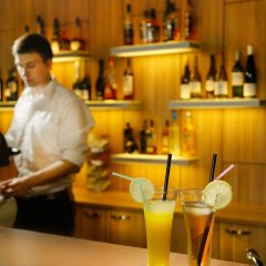 Green Vilnius Hotel гостиничный бар