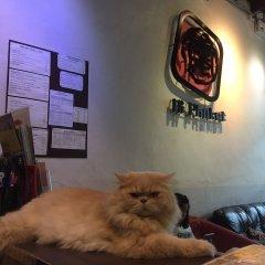 Ai Phuket Hostel с домашними животными