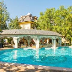 Отель DIT Orpheus Hotel Болгария, Солнечный берег - отзывы, цены и фото номеров - забронировать отель DIT Orpheus Hotel онлайн бассейн