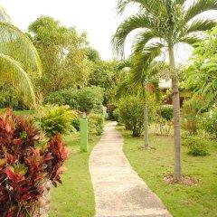 Отель Oasis Resort фото 11