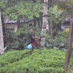 Отель FEEL Villa Шри-Ланка, Калутара - отзывы, цены и фото номеров - забронировать отель FEEL Villa онлайн фото 3