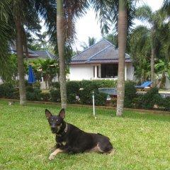 Отель Berghof Resort Samui с домашними животными
