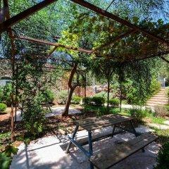 Отель Tur Sinai Organic Farm Resort Иерусалим фото 12