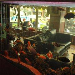 Hotel Topkapi детские мероприятия фото 2