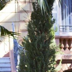 Отель Golden Tulip Cannes Hotel de Paris Франция, Канны - 1 отзыв об отеле, цены и фото номеров - забронировать отель Golden Tulip Cannes Hotel de Paris онлайн фото 7