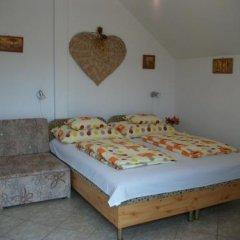 Отель Éden Vendégház Венгрия, Силвашварад - отзывы, цены и фото номеров - забронировать отель Éden Vendégház онлайн комната для гостей фото 2