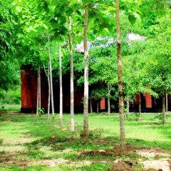 Отель Lavish Eco Jungle фото 10