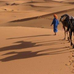 Отель Camels House Марокко, Мерзуга - отзывы, цены и фото номеров - забронировать отель Camels House онлайн приотельная территория фото 2