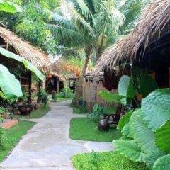 Отель Under the coconut tree фото 16