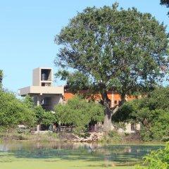 Отель Tree Tops Yala фото 2