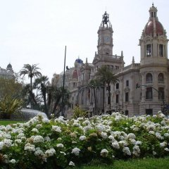 Отель Lotelito Испания, Валенсия - отзывы, цены и фото номеров - забронировать отель Lotelito онлайн фото 3