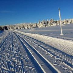 Отель Lillehammer Fjellstue спортивное сооружение