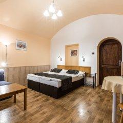 Отель Aparthotel Davids Чехия, Прага - отзывы, цены и фото номеров - забронировать отель Aparthotel Davids онлайн комната для гостей фото 2