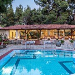 Отель Porfi Beach Hotel Греция, Ситония - 1 отзыв об отеле, цены и фото номеров - забронировать отель Porfi Beach Hotel онлайн бассейн