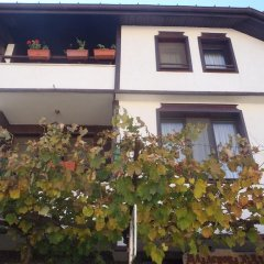Отель Mladenova House Болгария, Ардино - отзывы, цены и фото номеров - забронировать отель Mladenova House онлайн фото 23