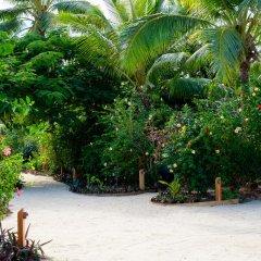 Отель Musket Cove Island Resort & Marina парковка