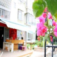 Отель Xiamen 3 Xiamen University Graduates Inn Zengcuoan Branch Китай, Сямынь - отзывы, цены и фото номеров - забронировать отель Xiamen 3 Xiamen University Graduates Inn Zengcuoan Branch онлайн бассейн