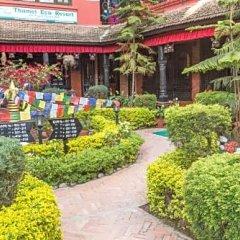 Отель Thamel Eco Resort Непал, Катманду - отзывы, цены и фото номеров - забронировать отель Thamel Eco Resort онлайн фото 13