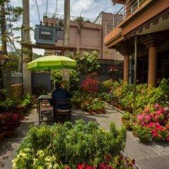 Отель View Point Непал, Покхара - отзывы, цены и фото номеров - забронировать отель View Point онлайн фото 10