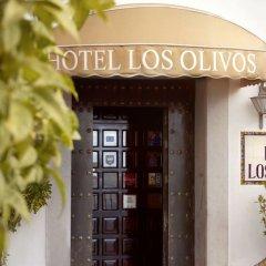 Отель Los Olivos развлечения