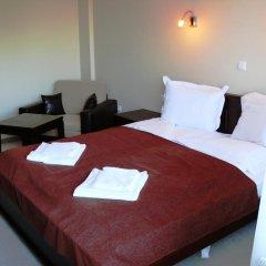 Отель Family Hotel Bela Болгария, Трявна - отзывы, цены и фото номеров - забронировать отель Family Hotel Bela онлайн комната для гостей фото 4