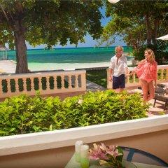Отель Sandals Montego Bay - All Inclusive - Couples Only с домашними животными