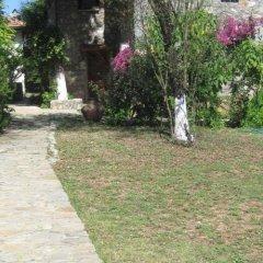 Doga Apartments Турция, Фетхие - отзывы, цены и фото номеров - забронировать отель Doga Apartments онлайн с домашними животными