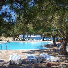 Club Mackerel Holiday Village Турция, Карабурун - отзывы, цены и фото номеров - забронировать отель Club Mackerel Holiday Village онлайн бассейн фото 2
