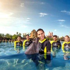 Atlantis The Palm in Dubai, United Arab Emirates from 385$, photos, reviews - zenhotels.com childrens activities photo 2