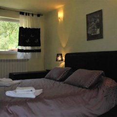 Отель Villa Beli Iskar Болгария, Боровец - отзывы, цены и фото номеров - забронировать отель Villa Beli Iskar онлайн комната для гостей фото 2
