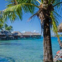 Отель Sofitel Bora Bora Marara Beach Resort Французская Полинезия, Бора-Бора - отзывы, цены и фото номеров - забронировать отель Sofitel Bora Bora Marara Beach Resort онлайн бассейн